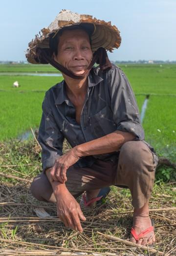 Rice farmer, Hoi An, Vietnam